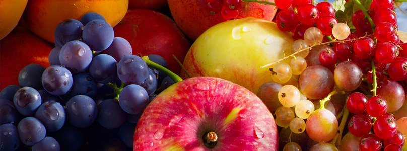 ecp_in_fruit_02