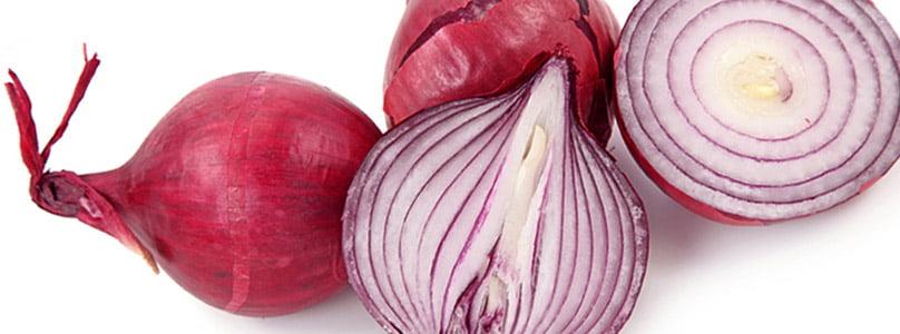 ecp_in_veg_onion